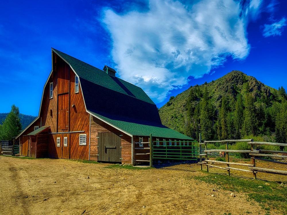 Ranch Barn x